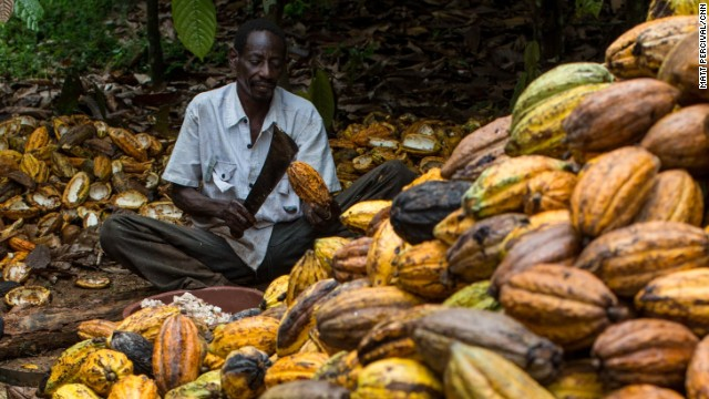 Cacao della Costa d'Avorio