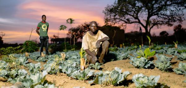 We can create local wealth and jobs and Governments should support family farming more effectively, say West African farmers